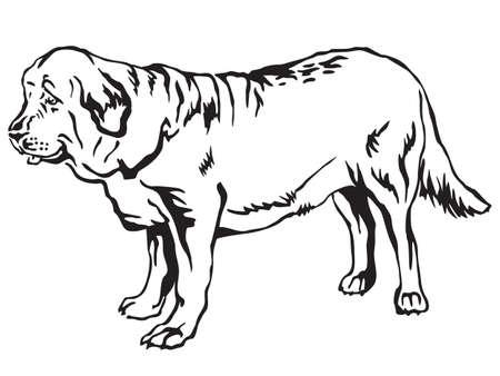 Decorative contour portrait of standing in profile Spanish Mastiff dog.