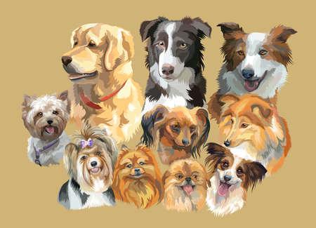 ベージュの背景に分離された犬の品種のカラフルな肖像画のセットです。