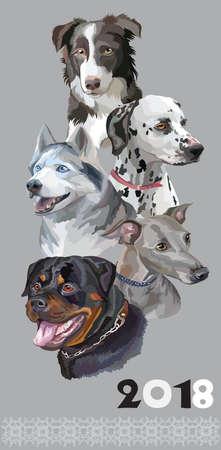 灰色の背景に分離された犬の品種のカラフルな肖像画のセットです。
