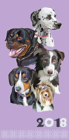 Set of colorful portraits of dog breeds isolated on purple backdrop.
