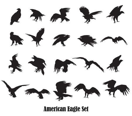 Satz von Vektor ausgeschnitten fliegen und sitzen Silhouetten von amerikanischen Adler (Seeadler, Weißkopfseeadler) in schwarzer Farbe auf weißem Hintergrund Standard-Bild - 86986271
