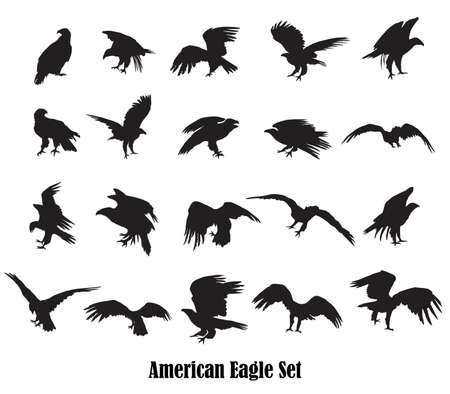Set of vector cut out flying and sitting silhouettes of american eagle (white-tailed eagle, bald eagle) in black color on white background
