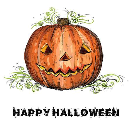Vector hand drawing Halloween orange pumpkin isolated on white background Ilustração