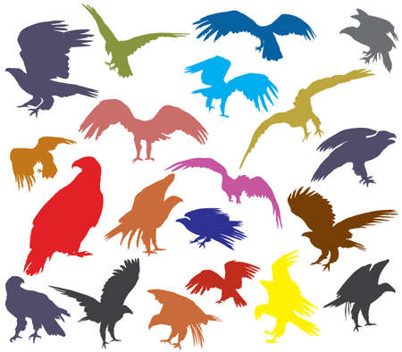Set of vector colorful cut out flying and sitting silhouettes of american eagle (white-tailed eagle, bald eagle) isolated on white background