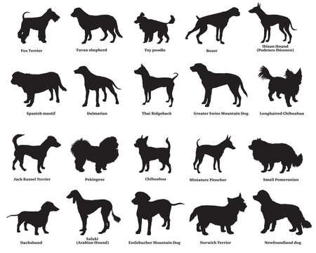 Vektorsatz verschiedene Zuchthundeschattenbilder lokalisiert in der schwarzen Farbe auf weißem Hintergrund. Teil 4
