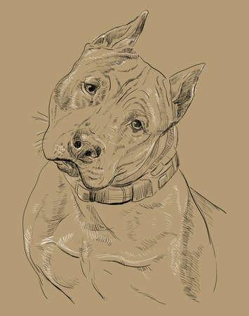 강아지의 색깔 된 초상화입니다.