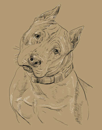 Colored portrait of a dog. Illustration