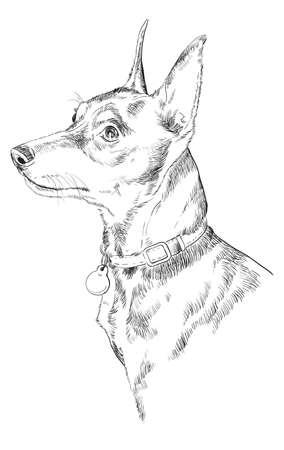 강아지 손 그리기 그림입니다. 일러스트