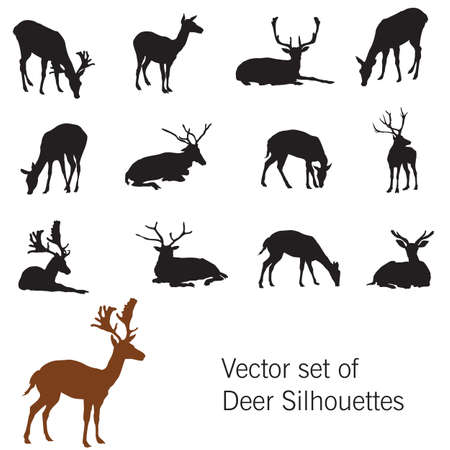 Set of standing and lying deer silhouettes.