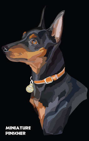 Colored portrait of a dog isolated illustration. Illustration