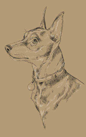 Dog portrait hand drawing black and white illustration. Illustration