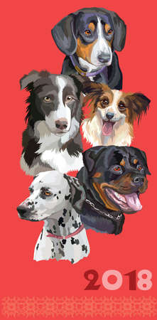 Vertical postcard with dogs of different breeds.