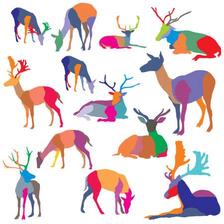 Set di sagome di cervo in piedi e menzogne ??mosaico colorato. Archivio Fotografico - 91761329