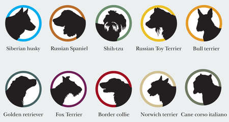 Set of  portraits of dog breeds silhouettes. Ilustracja