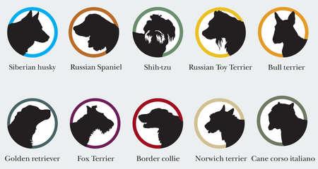 Set of  portraits of dog breeds silhouettes. Illustration