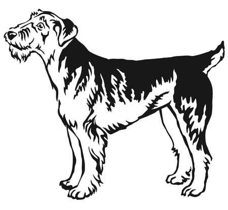 Decorative portrait of standing in profile Airedale Terrier, vector isolated illustration in black color on white background Illustration