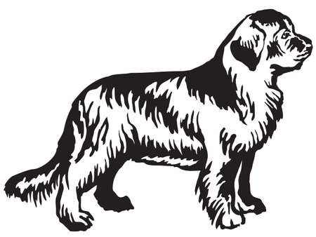 Decorative portrait of standing in profile Newfoundland dog, vector isolated illustration in black color on white background Vettoriali