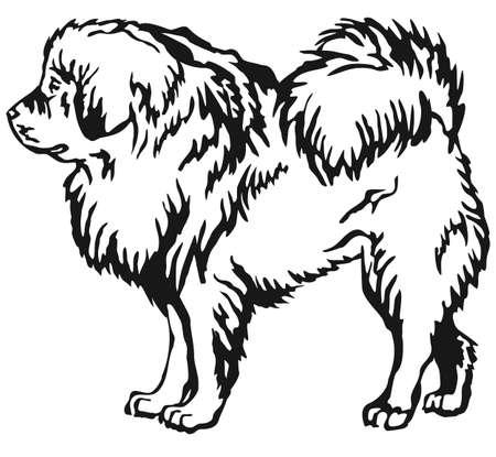 Decorative portrait of standing in profile Tibetan Mastiff, vector isolated illustration in black color on white background Illustration