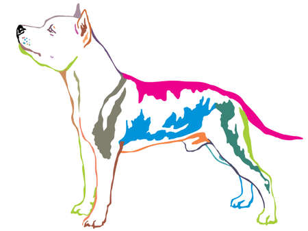 Colorful contour decorative portrait of standing in profile dog American Staffordshire Terrier, vector isolated illustration on white background