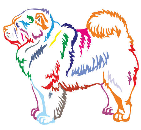 Colorful contour decorative portrait of standing in profile dog Chow Chow, vector isolated illustration on white background Illusztráció