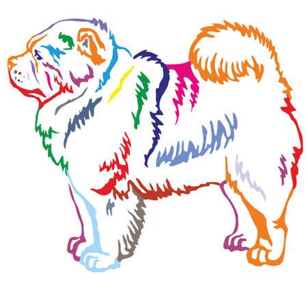 O retrato decorativo colorido do contorno de estar no cão de perfil Chow Chow, vector a ilustração isolada no fundo branco Foto de archivo - 94779875