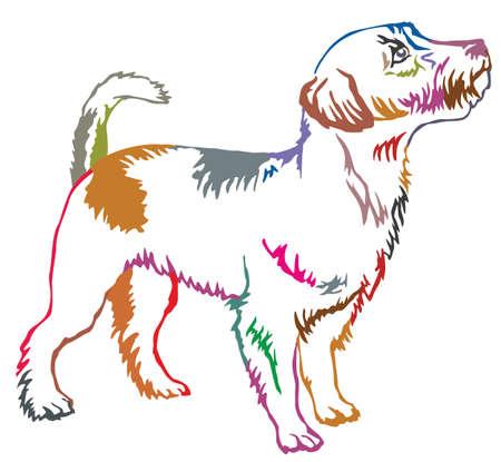프로필 개에 서있는 다채로운 컨투어 장식 초상화 잭 러셀 테리어, 벡터 격리 된 그림 흰색 배경에 일러스트