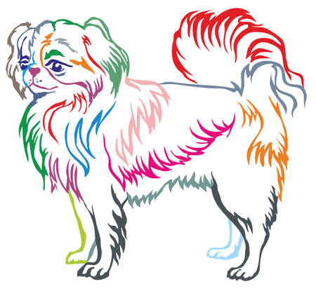 Colorful contour decorative portrait of standing in profile dog Japanese Chin, vector isolated illustration on white background