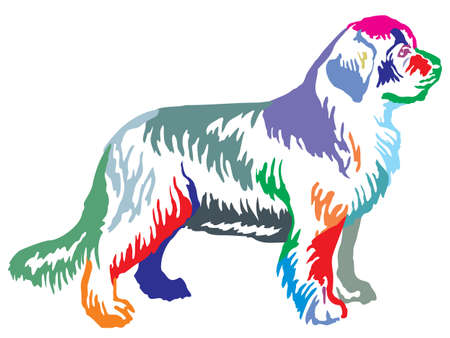 Colorful contour decorative portrait of standing in profile Newfoundland dog, vector isolated illustration on white background