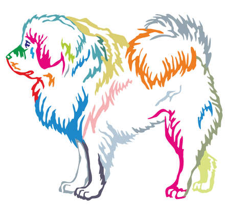 Colorful contour decorative portrait of standing in profile dog Tibetan Mastiff, vector isolated illustration on white background