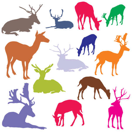 Set of vector colorful standing and lying deer silhouettes isolated on white background