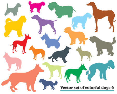 Set of colorful isolated different breeds dogs vector silhouettes on white background.