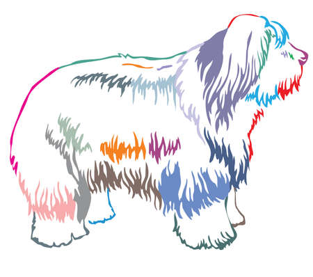 Colorful contour decorative portrait of standing in profile Old English Sheepdog, vector isolated illustration on white background Illustration