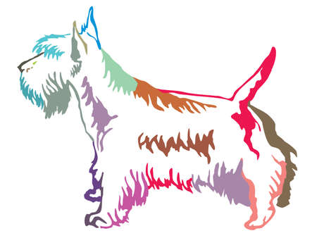 Colorful contour decorative portrait of standing in profile dog Scottish Terrier, vector isolated illustration on white background