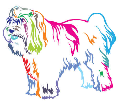 Colorful contour decorative portrait of standing in profile dog Tibetan Terrier, vector isolated illustration on white background