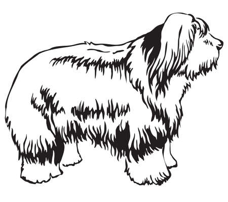 Decorative portrait of standing in profile Dog Old English Sheepdog, vector isolated illustration in black color on white background