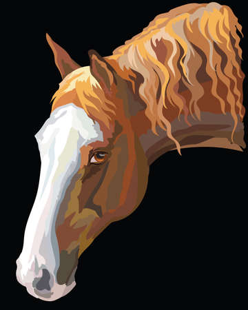 Colored portrait of dark palomino horse. Horse head with long mane in profile isolated vector illustration on black background