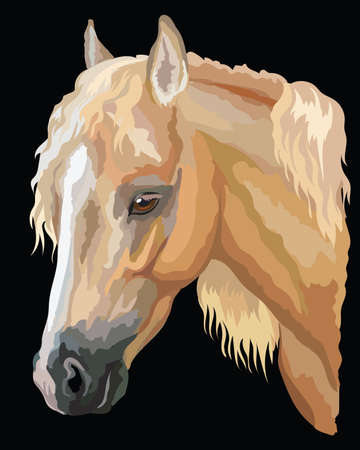 Colored portrait of palomino Welsh Pony. Horse head with long mane in profile isolated vector illustration on black background Иллюстрация