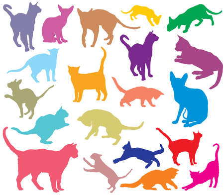 Set of cats different breeds silhouettes (sitting, standing, lying, playing) in different color isolated on white background. Vector colorful illustration
