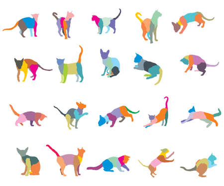 Set of colorful mosaic different breeds cats silhouettes (sitting, standing, lying, playing) isolated on white background. Vector illustration.