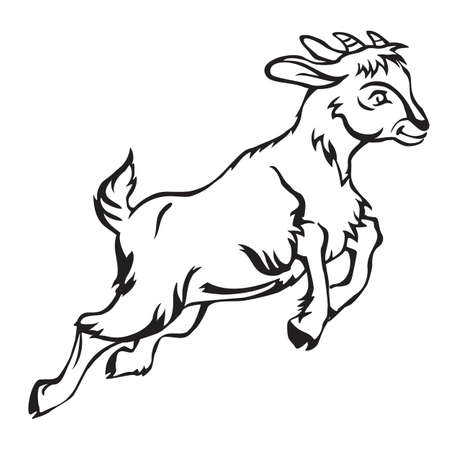 Decorative jumping funny cartoon goat kid. Monochrome vector illustration in black color isolated on white background.
