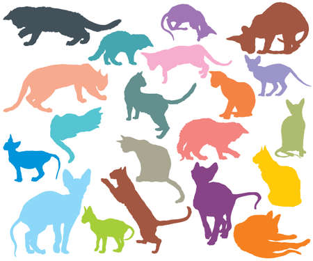 Set of cats different breeds silhouettes (sitting, standing, lying, playing) in different color isolated on white background. Vector colorful illustration.  イラスト・ベクター素材