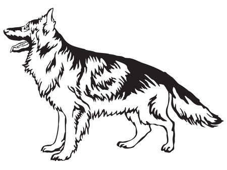 Decorative portrait of standing in profile longhaired German Shepherd, vector isolated illustration in black color on white background