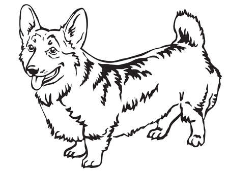 Decorative portrait of standing in profile Pembroke Welsh Corgi, vector isolated illustration in black color on white background