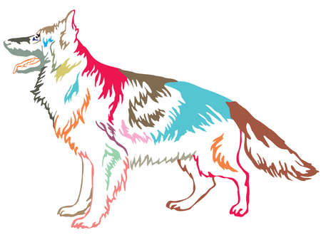 Colorful contour decorative portrait of standing in profile longhaired German Shepherd , vector isolated illustration on white background