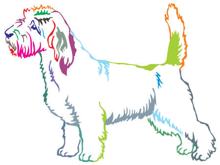 Colorful contour decorative portrait of standing in profile Petit Basset Griffon Vendeen, vector isolated illustration on white background Иллюстрация