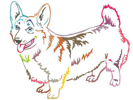 Colorful contour decorative portrait of standing in profile Pembroke Welsh Corgi, vector isolated illustration on white background