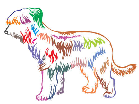 Colorful contour decorative portrait of standing in profile Briard, vector isolated illustration on white background