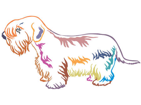 Colorful contour decorative portrait of standing in profile Sealyham Terrier, vector isolated illustration on white background