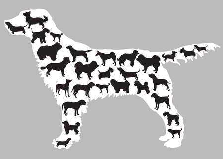 Set of different isolated dogs silhouettes (different standing dogs breeds) in black color inside big standing silhouette of dog in white color. Grey background. Vector monochrome illustration.