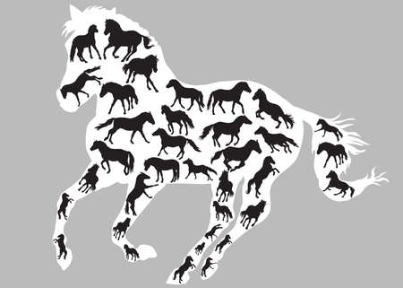 Set of different  isolated horses silhouettes (standing, trotting and galloping) in black color inside big galloping silhouette of horse in white color. Grey background. Vector monochrome illustration.